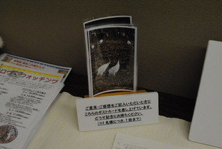 フェスタ県文展示 006 s.jpg
